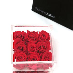 Flower Cube 9 rose rosse