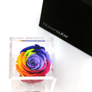 Flower Cube Arcobaleno