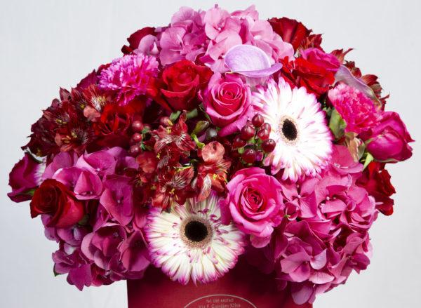Flower Box Nisida