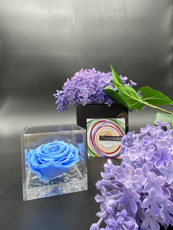 Flower Cube Azzurro